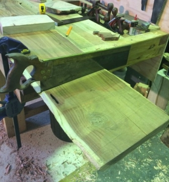 Cross cutting the Red Gum to length