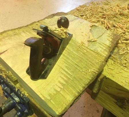 Scrub planning the Silky Oak